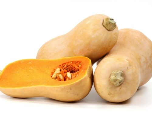 Healthy Squash Recipe for a Weight Loss Diet