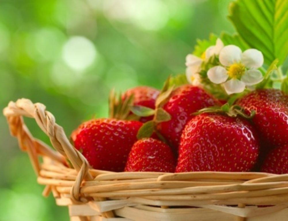 Healthy Eating Guidelines for Fruit Intake