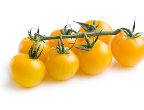 A Diet for High Blood Pressure Should Include Tomatoes
