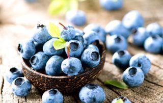 benefits of a balanced die blueberries prevent Alzheimer's disease