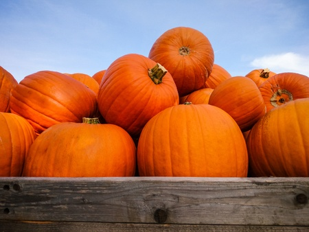 diabetic diets should include pumpkin