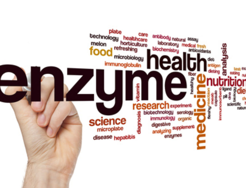 Should a Balanced Diet Include Enzyme Supplements?