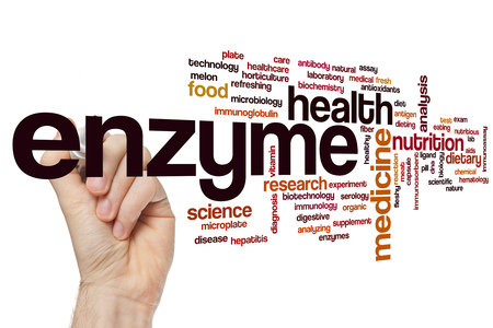 does a balanced diet include enzyme supplements