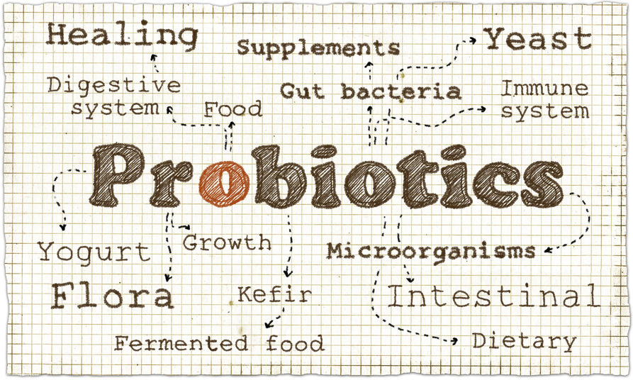 are probiotics part of a healthy diet